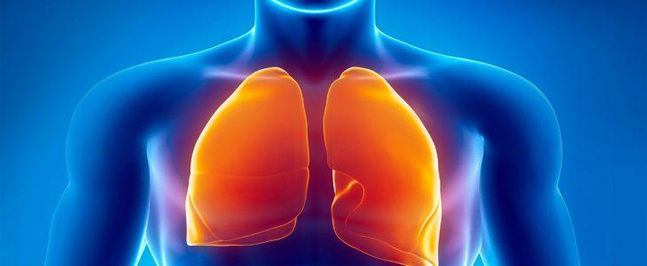 cara membersihkan paru -paru