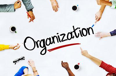 Pentingya Organisasi