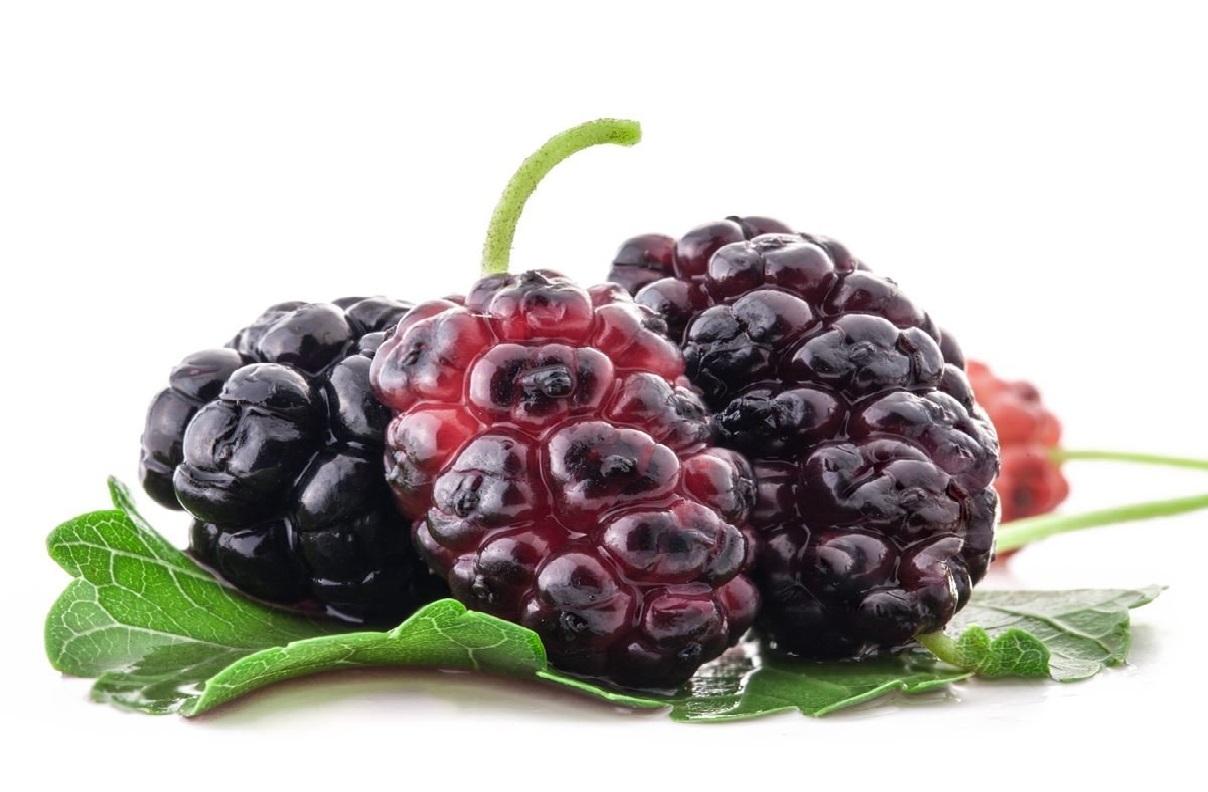 buah arbei